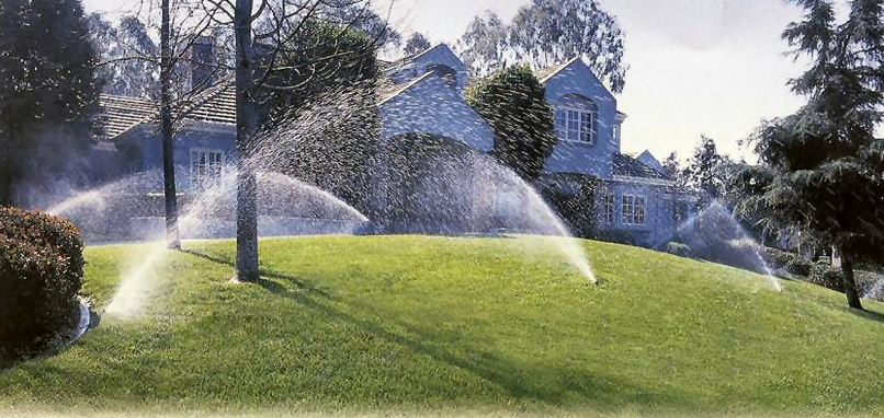 example of backyard sprinklers in Fort worth